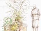 zahrada11